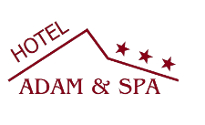 logotyp Adam&Spa